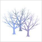 2月枯れ木